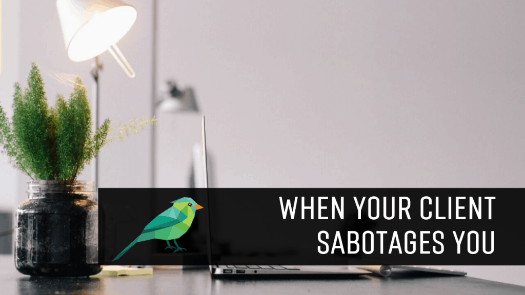 What to Do When Your Client Unintentionally Sabotages Your Efforts