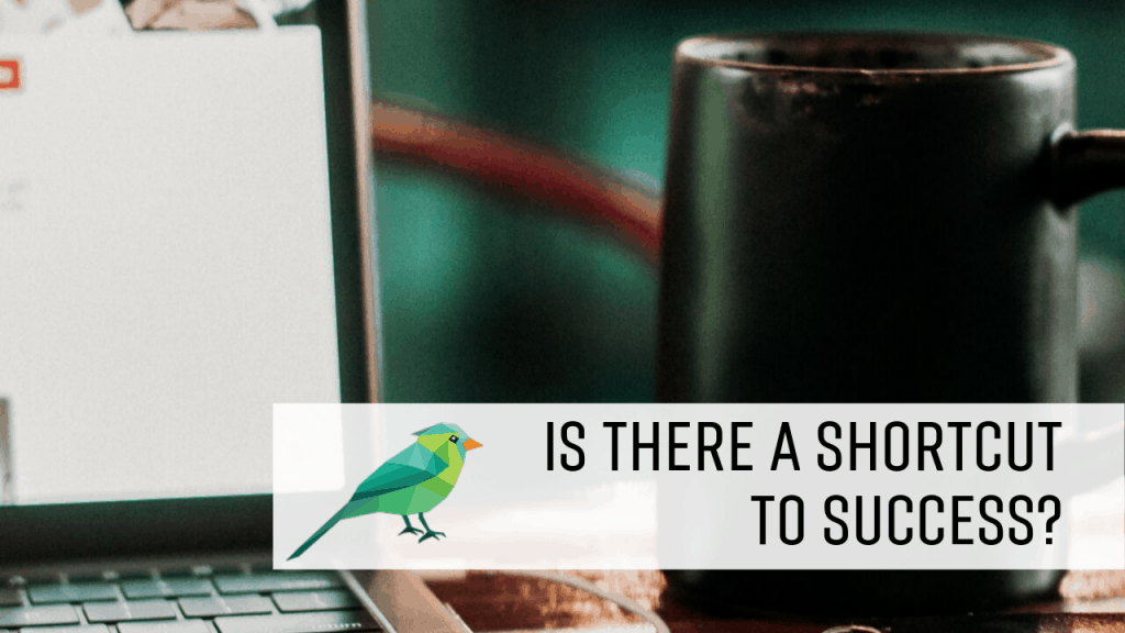Are There Shortcuts to Success?