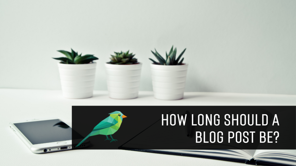 Ideal Blog Post Length: How Long Should a Blog Post Be in 2020?